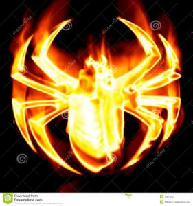 spider-surrounded-fire-10574837